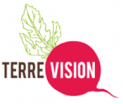 terre vision